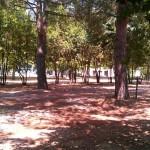 parco-agriturismo (10)
