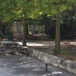 parco-agriturismo (2)
