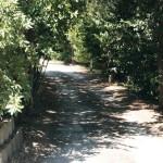parco-agriturismo (4)