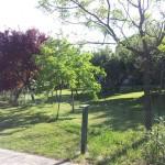 parco-agriturismo (7)